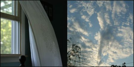 Windowcollage_2-1