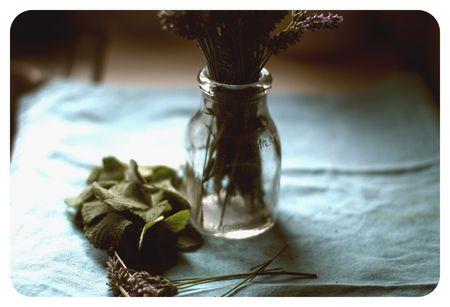 Mint&lavender