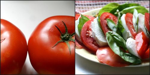 Tomatoecollage