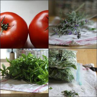 Harvestcollage